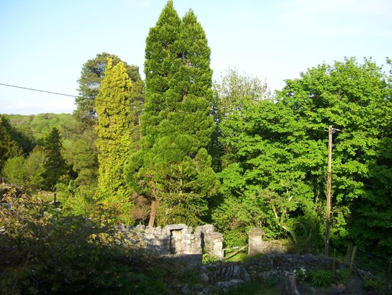 Hampsfell House Hotel: view from room no 4