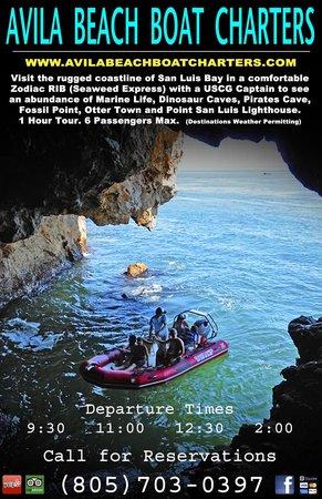 Seaweed Express: Enjoy the rugged coastline of Avila Beach