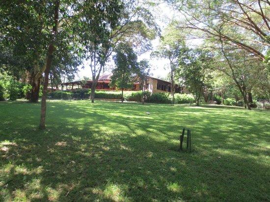 Sarova Mara Game Camp: Lawn