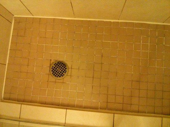 Hilton Garden Inn Dulles North : Probably fine, but tile looks icky