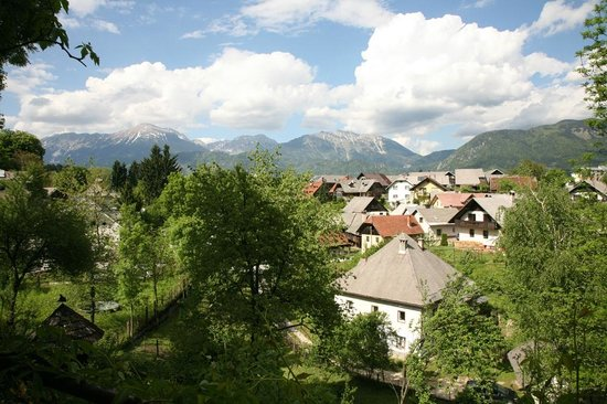 Gostilna Lectar: Stunning view from the terrace
