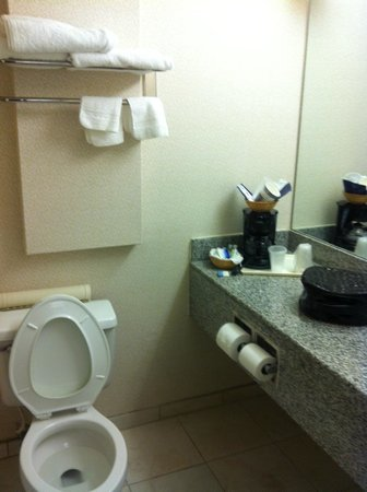 Best Western Manassas Hotel: Bathroom