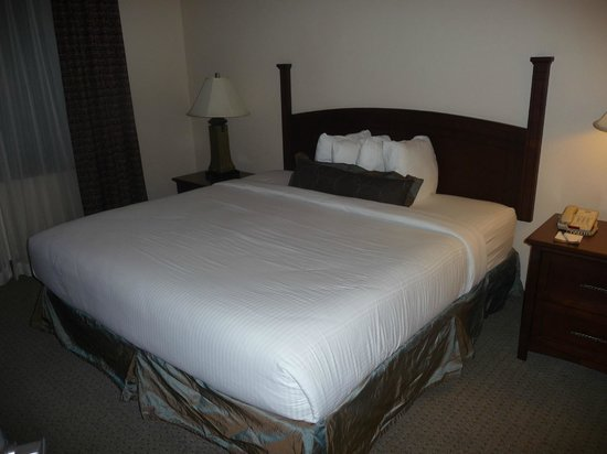 Staybridge Suites San Antonio NW near Six Flags Fiesta Texas: awesome comfortable king bed