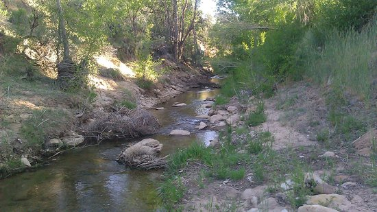 Golden Hills Motel : Small stream behind motel, East Fork of the Virgin River I believe