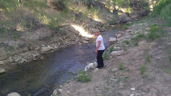 Golden Hills Motel : My favorite person and pet checking out the small stream behind the motel