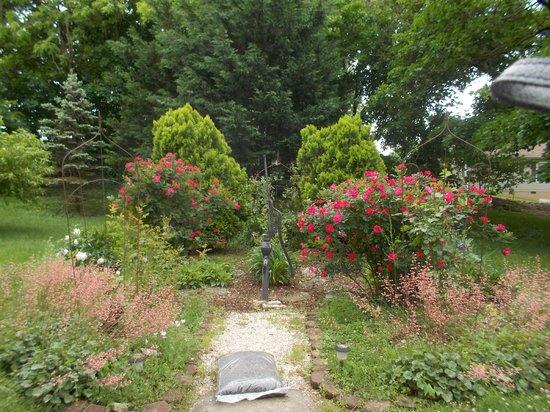 Jacob Rohrbach Inn: Backyard