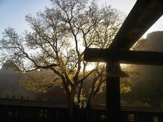 Historic Pioneer Lodge: Magical Morning