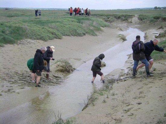Decouvrons la Baie de Somme Day Tours : traversée d'un rieu