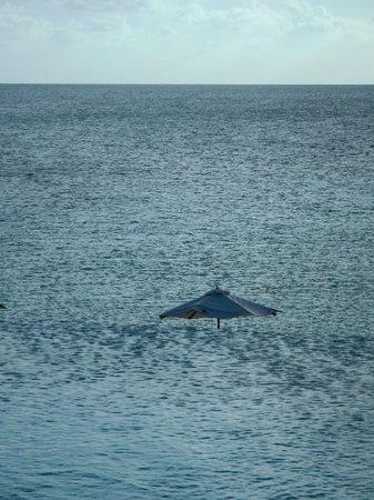 The Cove Eleuthera: The infinity pool