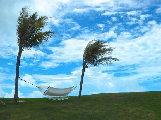 The Cove Eleuthera: Chillax here