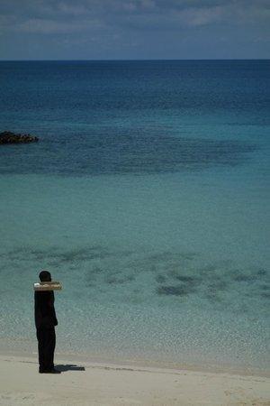 The Cove Eleuthera: Beach side service