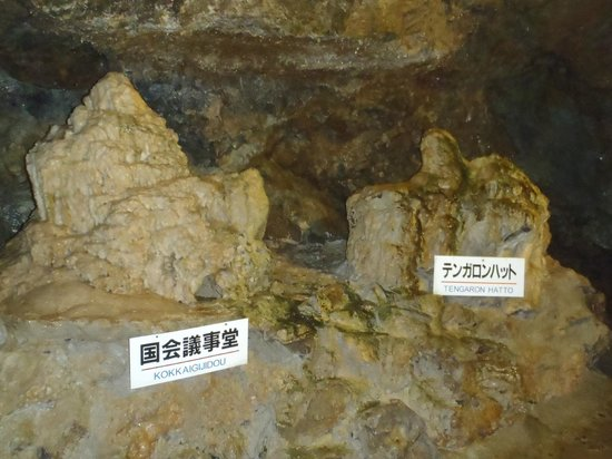 Hida Great Limestone Cave and Ohashi Collection Kan Museum: 数々の建造物?