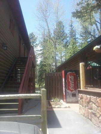 写真Swiftcurrent Lodge On The River枚