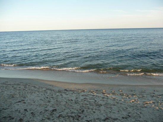 The Breakers on the Ocean: Ocean view in front of bldg