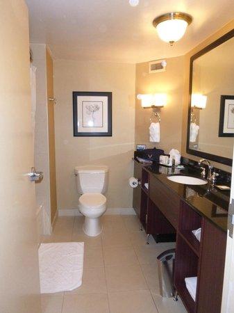 Hilton Charlotte Executive Park: bathroom