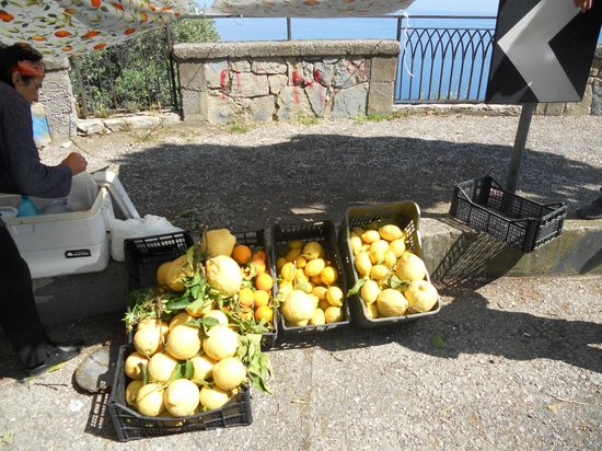 Colours of Naples - Sorrento and Capri Day Tours: gigantic lemons!