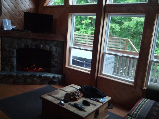 Wild Pacific Ocean Front Cabins: living room, fireplace, flat screen and hot tub