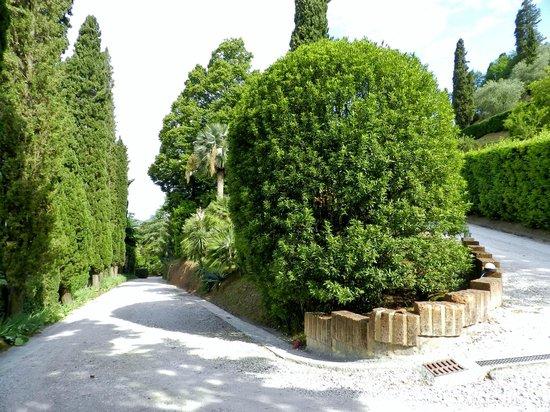 Villa Alta: Entrada