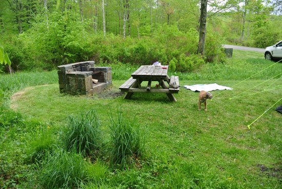 Mongaup Pond Campground: Each pitch comes with a fire pt and picnic table