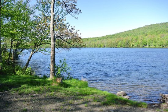 Mongaup Pond Campground: View of the lake from Loop F