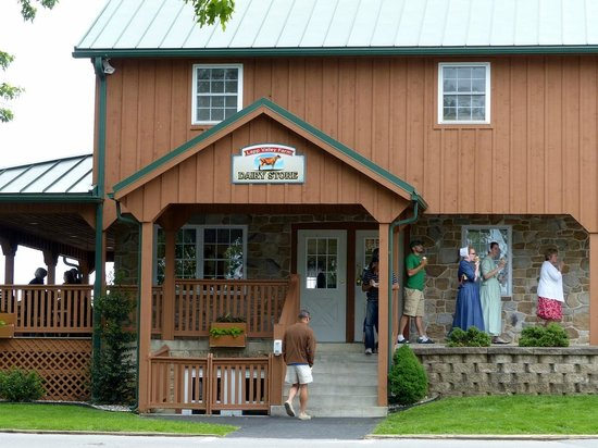 Lapp Valley Farm: The store