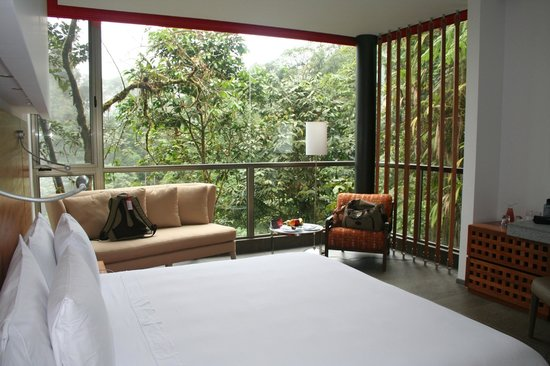Mashpi Lodge: View out to the Cloud Forest surroundings