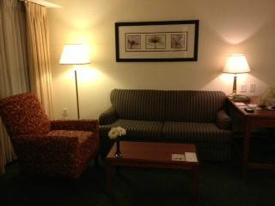 Residence Inn Philadelphia Great Valley/Exton: Living rooom