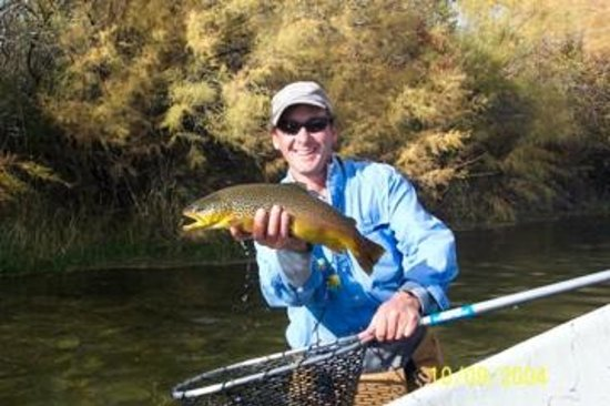 Efferson Outfitters Fly Fishing : Nice Big Horn River Brown