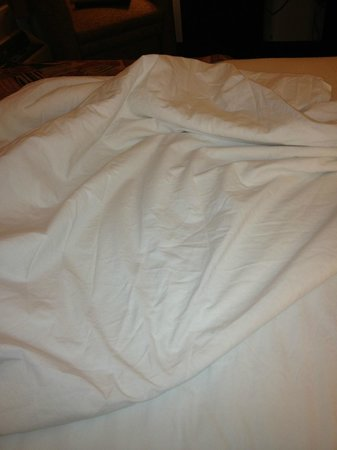 Sleep Inn: dirty and stained bed sheets