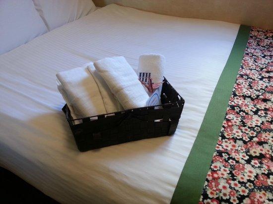 Dotonbori Hotel: bathrobe