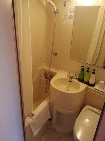 Dotonbori Hotel: small bathroom