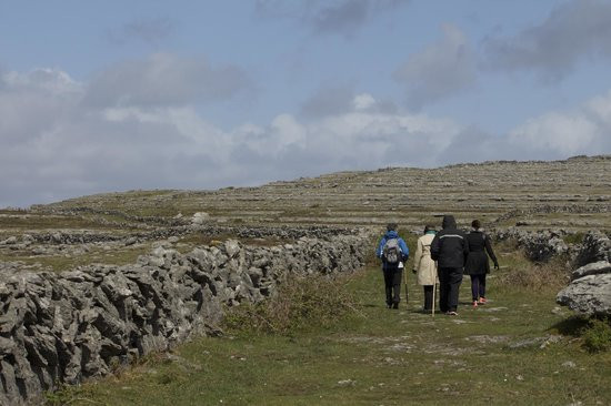 Burren Guided Walks & Hikes-Walking Day Tours