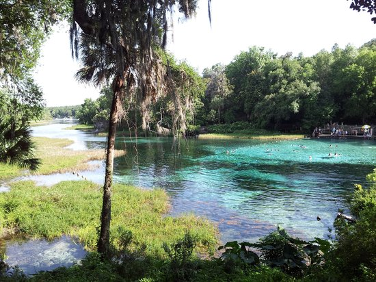 Dunnellon, FL: the hot springs