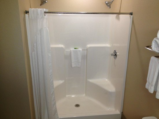 Holiday Inn Express & Suites Green Bay East : Holiday Inn Express Green Bay shower