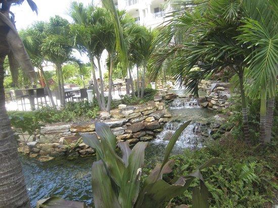 Seven Stars Resort & Spa : grounds