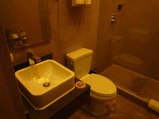 Goldberry Suites & Hotel : 水周りはきれいでした