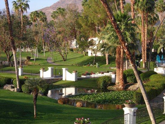Omni Rancho Las Palmas Resort & Spa: View from the room. Beautiful!