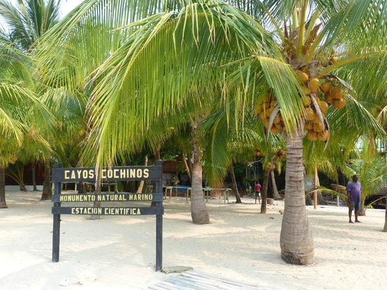 ฮอนดูรัส: Cayos Cochinos