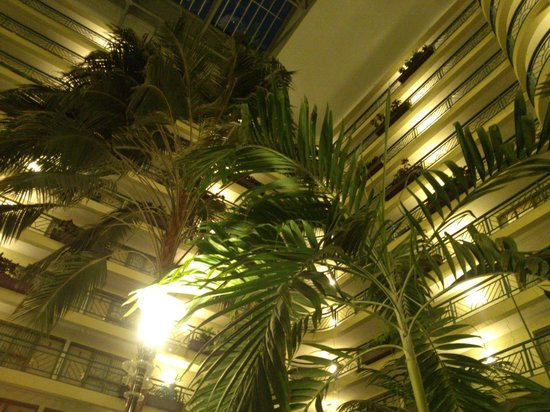 Embassy Suites by Hilton Minneapolis - Airport: Live plants and trees throughout the atrium