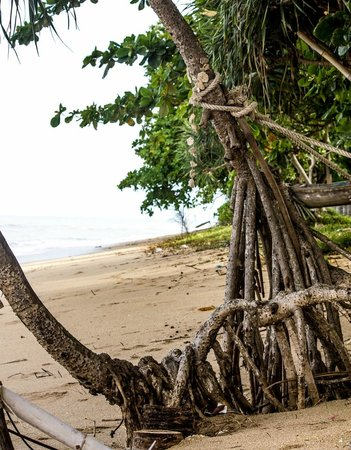 Coco Lanta Resort: strand