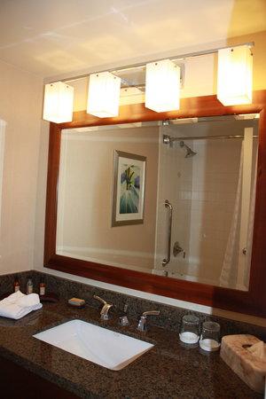 Houston Marriott Medical Center/Museum District: Bathroom