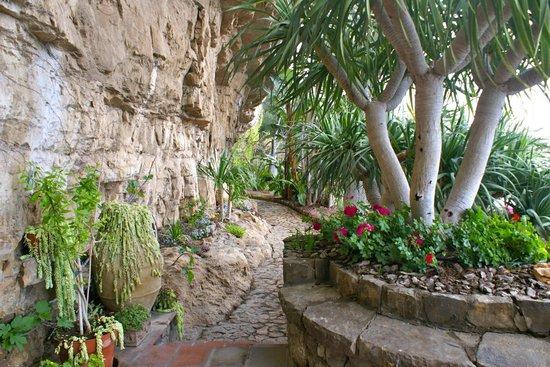 La Grotta dei Fichi: Path leading from front door