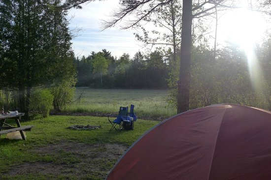 Fish Creek Campground : Morning Light