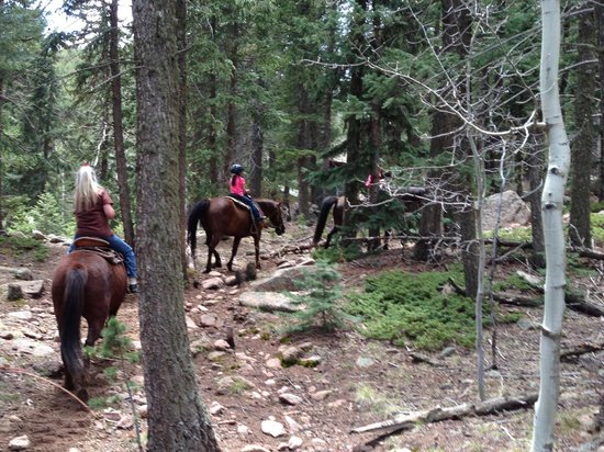Old Stage Riding Stables: Riding in the beautiful mountains