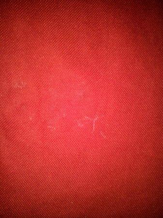 Hotel ZAR: extrañas manchas en el cobertor de mi cama