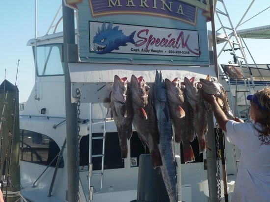 HarborWalk Marina: a few fishing trophies shown just after the boat pulls into the harbor