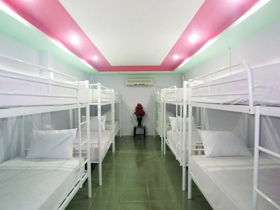Thuy Tien Hotel: 12 Bed Mixed Dorm Room