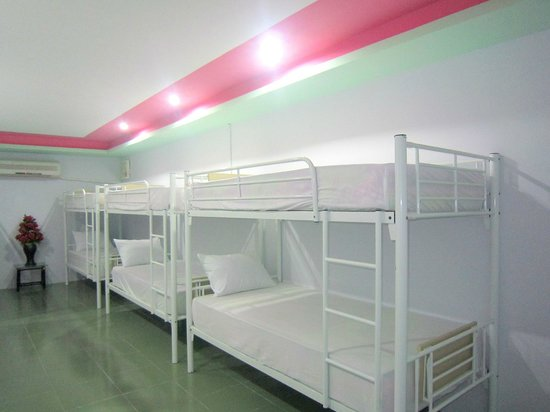 Thuy Tien Hotel : 12 Bed Mixed Dorm Room