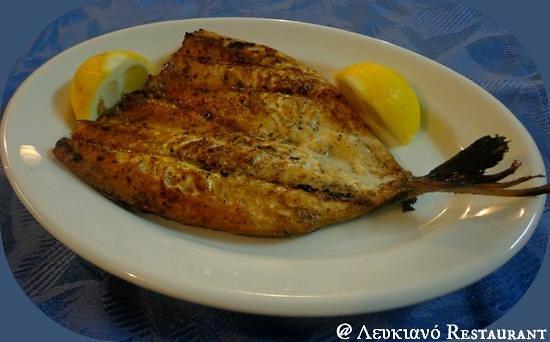 Lefkiano Restaurant : Grilled fillet Mackerel! # Lefkiano