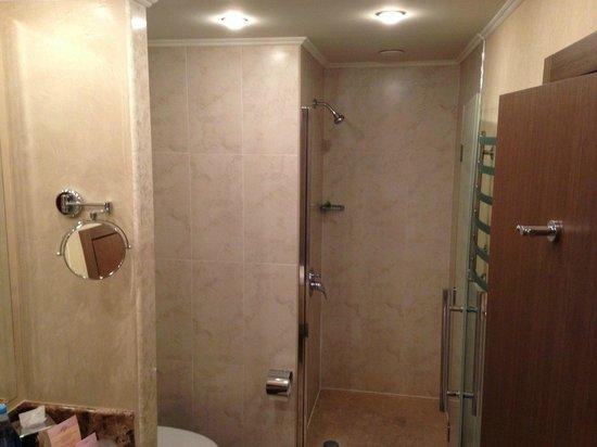 Boutique Hotel Riviera on Podol: shower